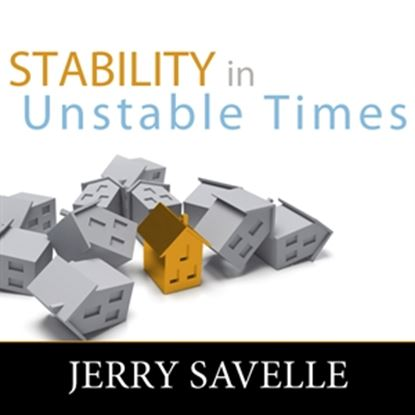 Picture of Stability In Unstable Times